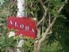 aloha-plage-goulien